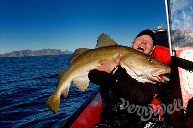 рыбалка в норвегии стоимость одной рыбалки